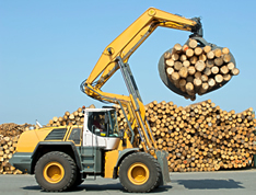 VISTA safety training products for operators of equipment used in log yards in the forestry industry